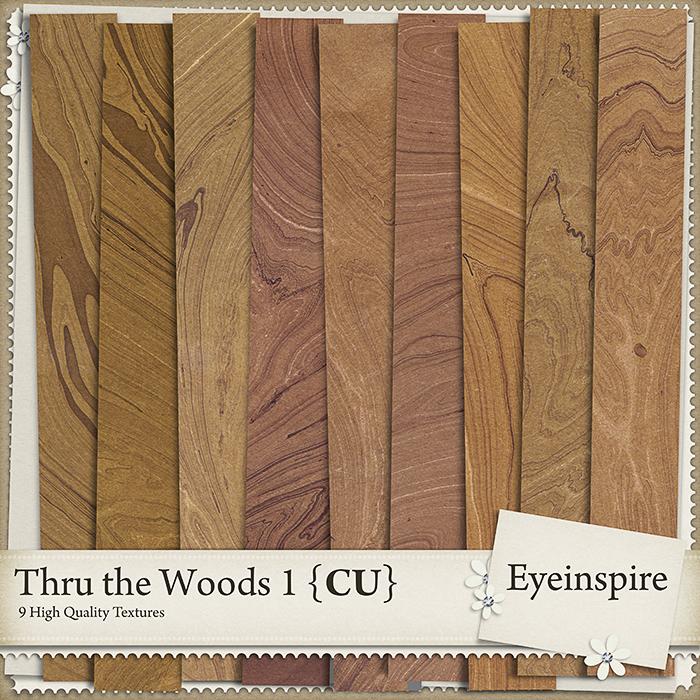 Thru the Woods 1