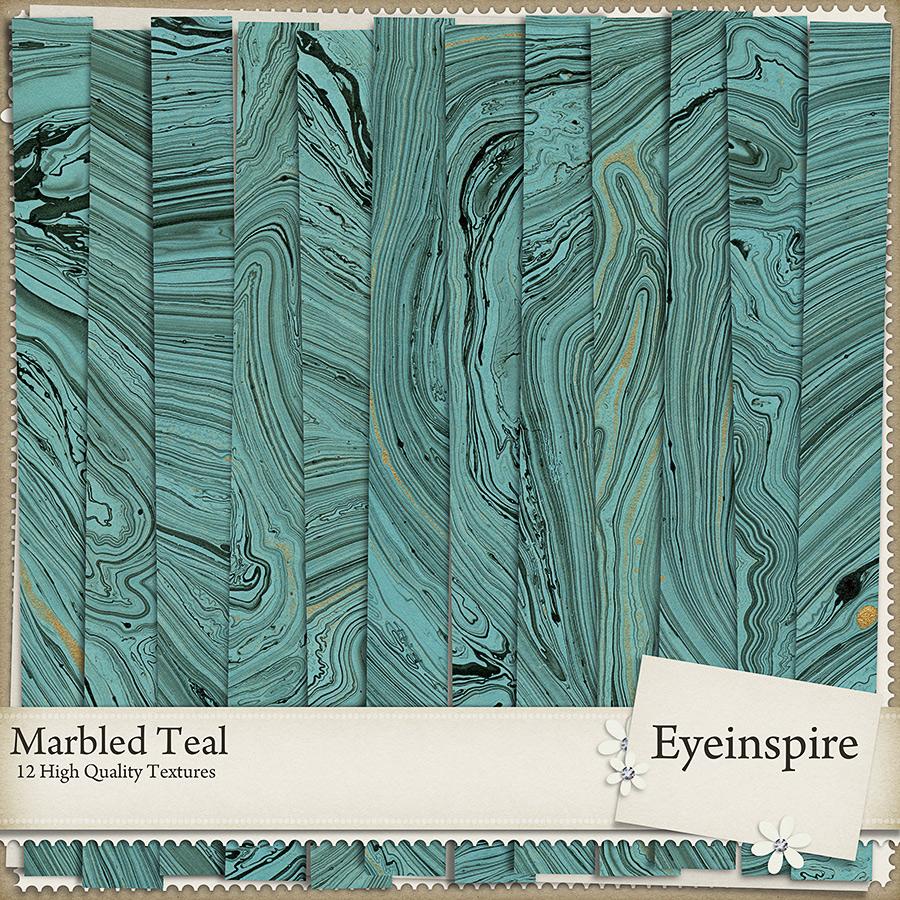 Marbled Teal
