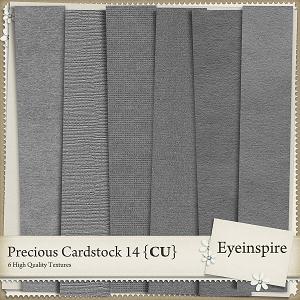 Precious Cardstock 14