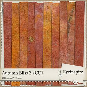 Autumn Bliss Textures 2
