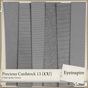 Precious Cardstock 13