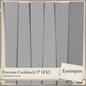 Precious Cardstock 37
