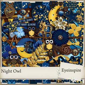 eyeinspire_nightowl_P1